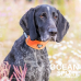 OCEAN SPORT ADJUSTABLE COLLAR